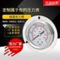 耐震压力表 YN50ZT轴向(背接式)带边 规格齐全 可定制
